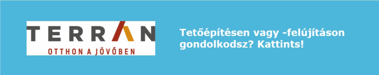 terran-banner